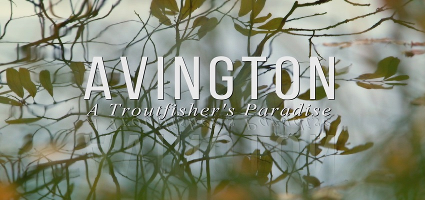 Interview with Gerry Pomeroy – Director of 'Avington'