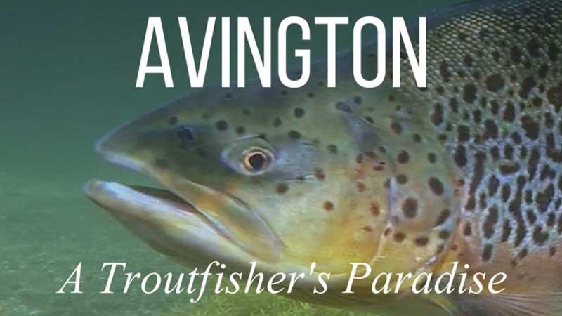 www.fishingtv.com