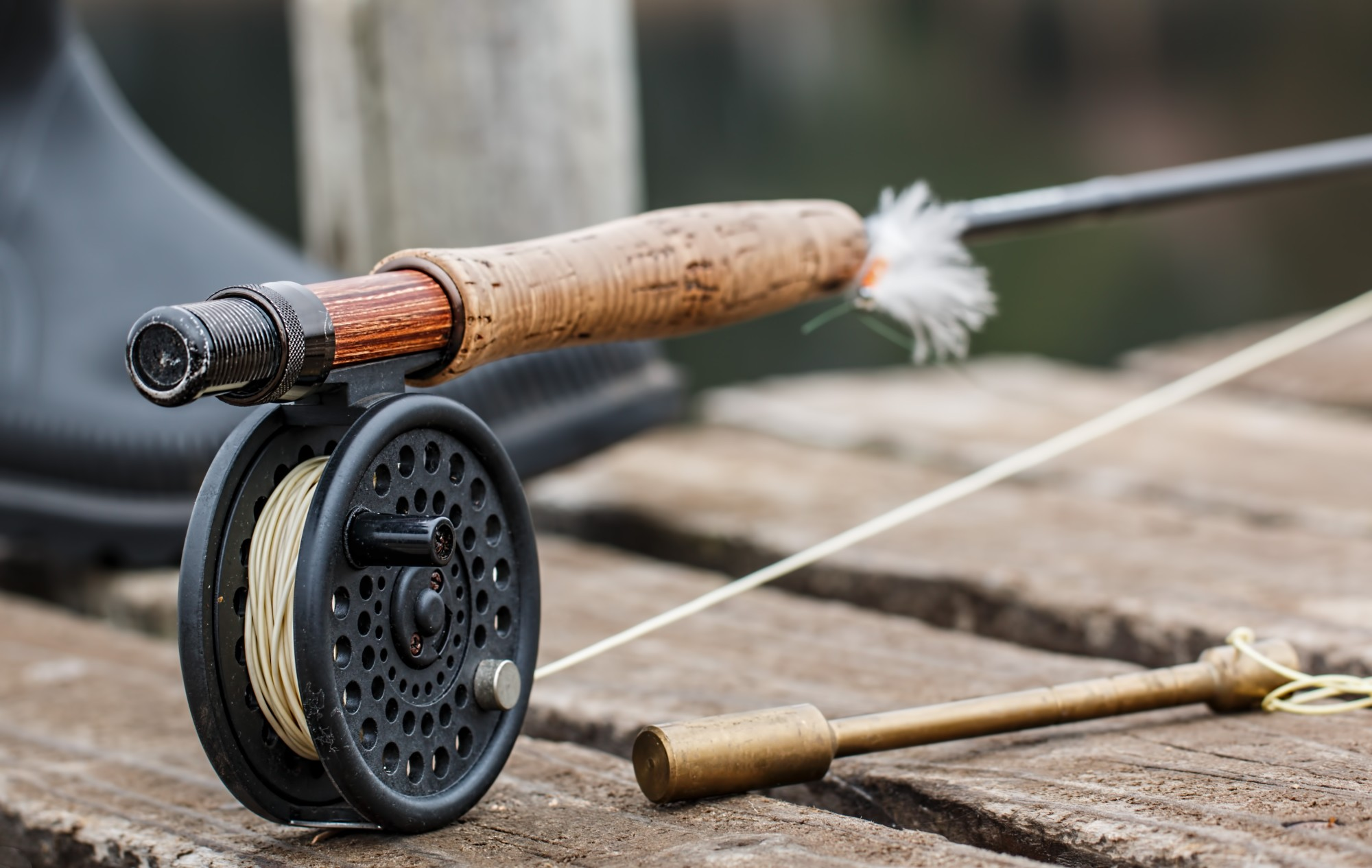 The 7 Essential Saltwater Fly Fishing Gear Items Every Angler Should Own